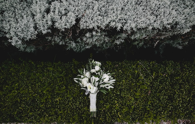 Wedding bouquet of white flowers lies on green bush photo free wedding bouquet of white flowers lies on green bush free photo mightylinksfo