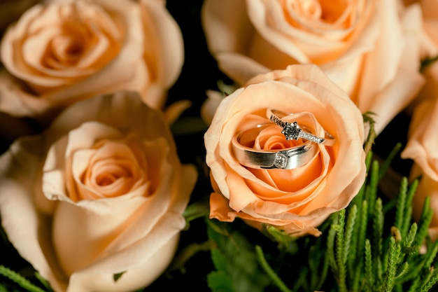 Wedding couple rings placed on orange roses Premium Photo