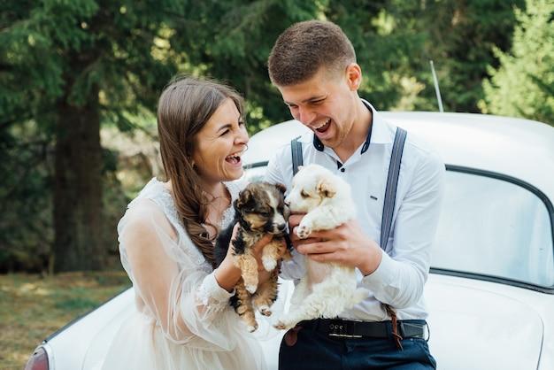 Свадебная пара сидит с щенком Premium Фотографии