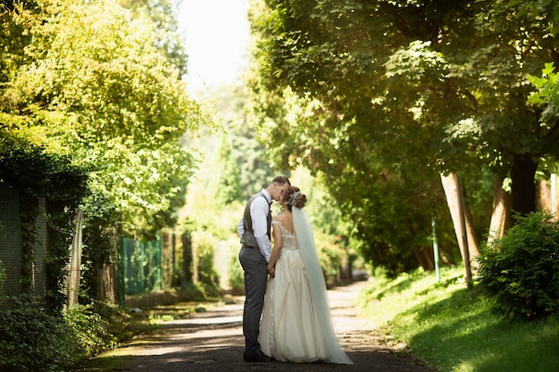 A wedding couple walking in the sunny park. newlyweds hold hands. back view Premium Photo