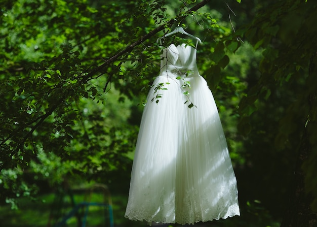 Wedding dress hanging on a tree in the park Free Photo