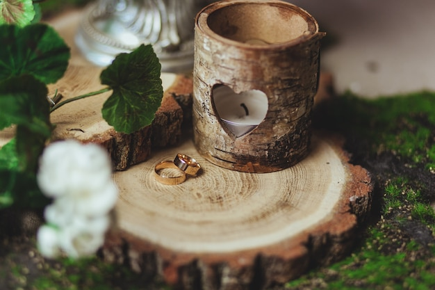 Wedding golden rings on the stump in a green grass Free Photo