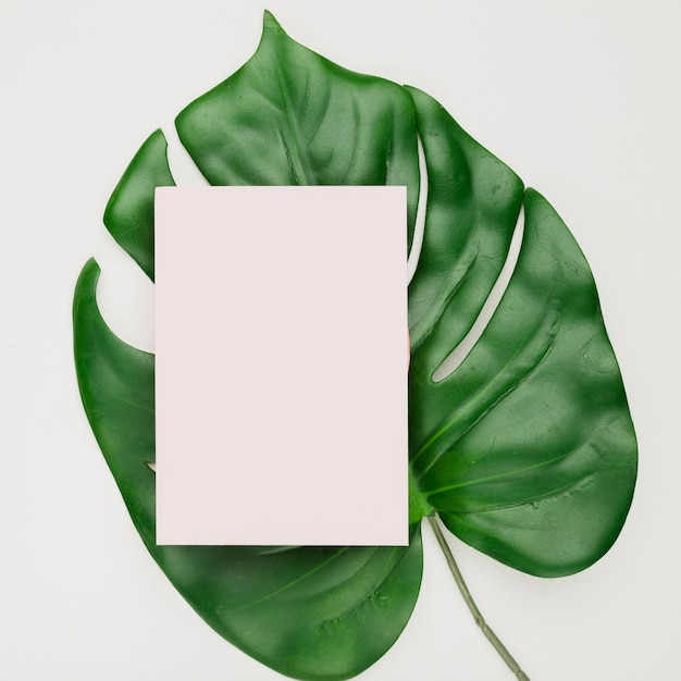 Wedding invitation card template on leaf Photo | Free Download