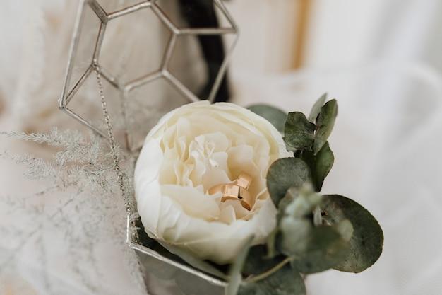 Wedding rings inside a peony flower Free Photo