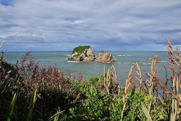 ニュージーランドの南島の西海岸 Premium写真