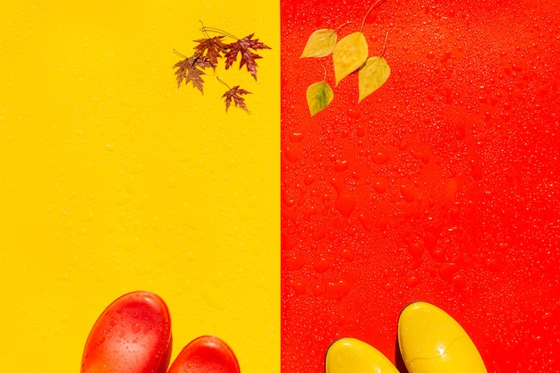 On wet bright backgrounds are colored rubber boots. and on the toe of the boots and on the opposite there are autumn leaves. Premium Photo