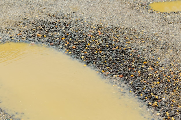 , wet brown soil in a dirty country road after the rain Premium Photo