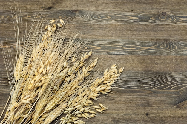 Wheat and barley ears in a sheaf in the lower left corner of the image on a table of dark wood. Premium Photo