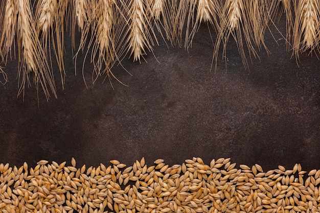 Wheat grass and seeds on textured background Free Photo