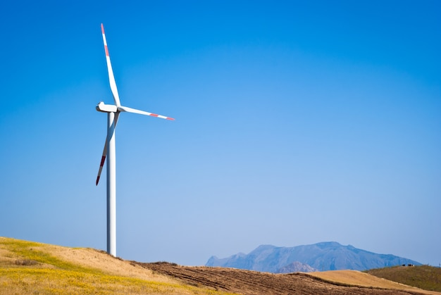 Wheatfield with windmills Premium Photo