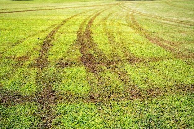芝生のフィールドにホイールプリント Premium写真