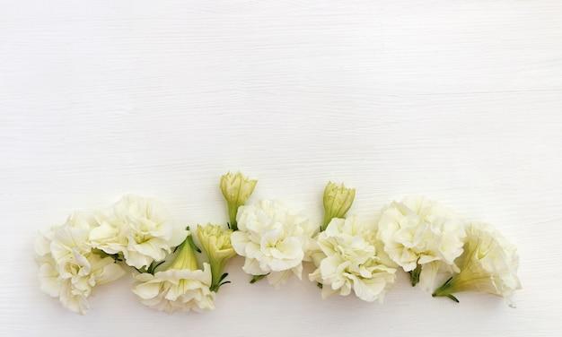 White background with flowers Premium Photo