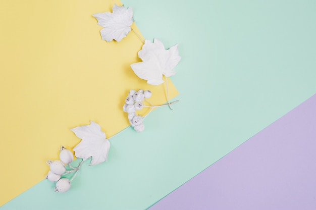 White berries and leaves on a multicolor pastel autumn background Premium Photo