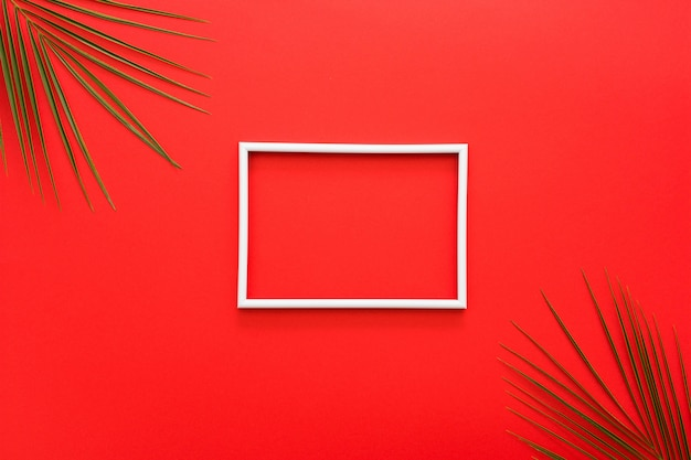 White border of frame and palm leaves on red surface Free Photo
