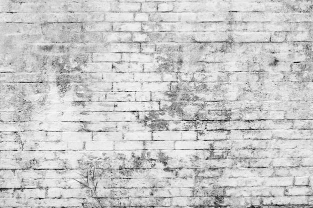 White brick wall Premium Photo