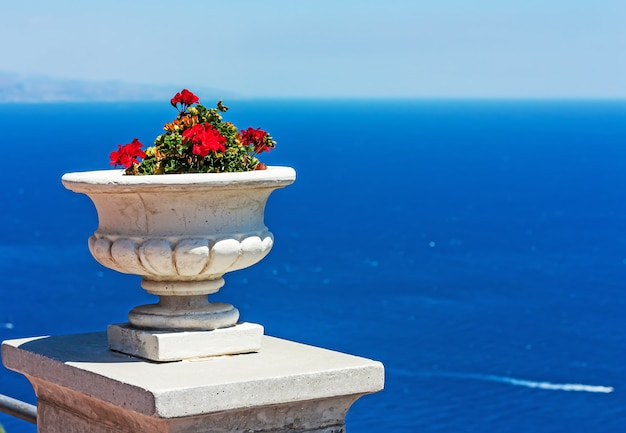 화창한 여름 날에 푸른 바다 배경에 붉은 제라늄과 화이트 세라믹 냄비. 프리미엄 사진