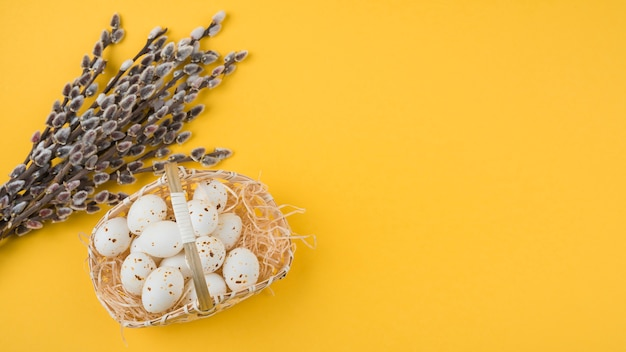 White chicken eggs in basket with willow branches Free Photo