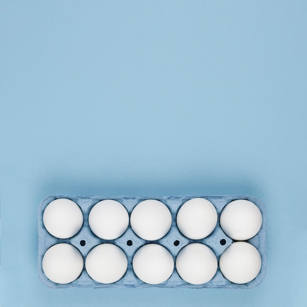 White chicken eggs in rack on table Free Photo