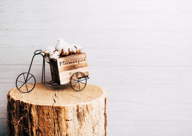 White cotton pod on antique bicycle over the tree stump Premium Photo