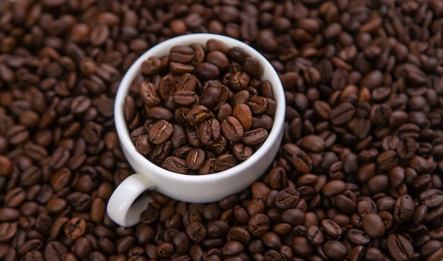 White cup with coffee beans Premium Photo