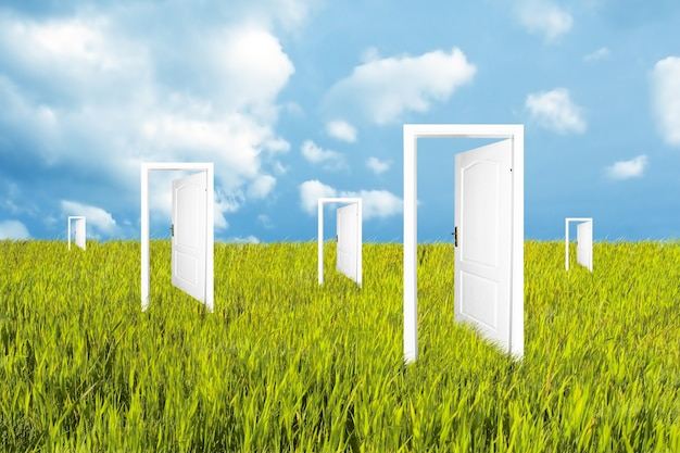 White doors in the meadow Free Photo