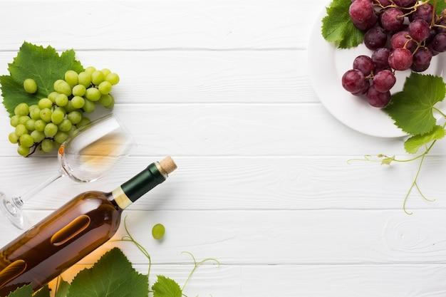 White dry wine and red grapes Free Photo