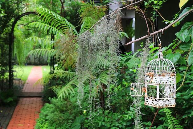 White empty bird cage in a tropical garden with bricks paved walkway Premium Photo