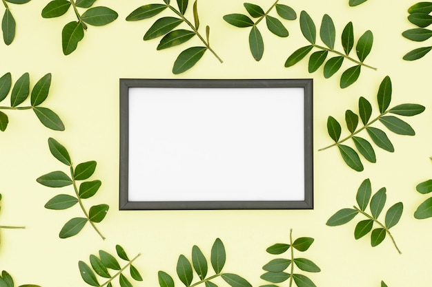 White empty picture frame surrounded by leaves twig on yellow background Free Photo