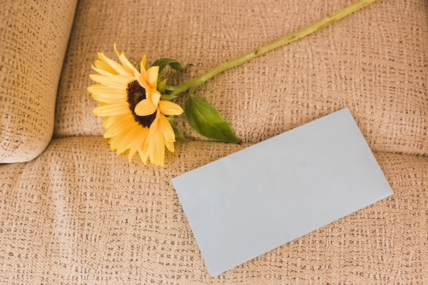 White envelope with space to write and a sunflower Premium Photo