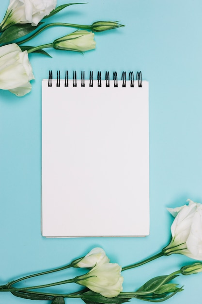 White eustoma flower with blank spiral notepad on blue background Free Photo