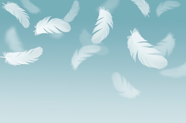 White feather floating in the air. Premium Photo