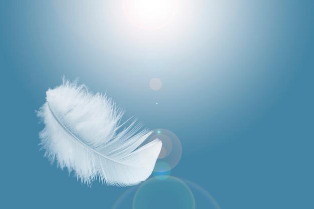 стихийнаямагия -  Стихия Воздух. Стихийная магия. Обряды. Ритуалы. Путь Ведьмы Воздуха White-feather-floating-sky_36860-445
