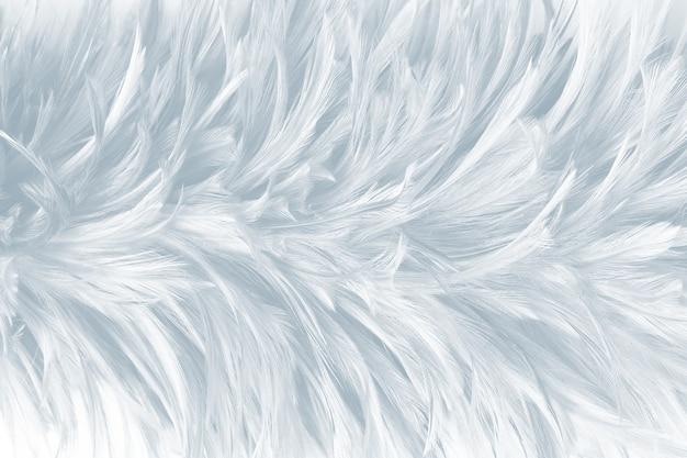 White feather texture background Photo | Premium DownloadFeather Background Twitter