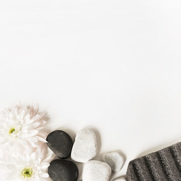 White Flowers La Stones And Pumice Stone Isolated Over