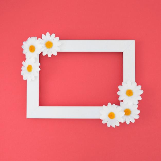 White frame with daisies Free Photo