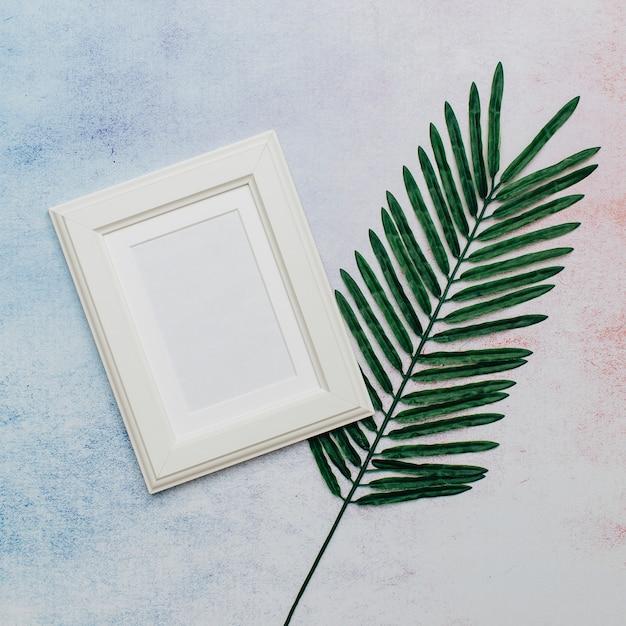 White frame with palm tree leaf Free Photo