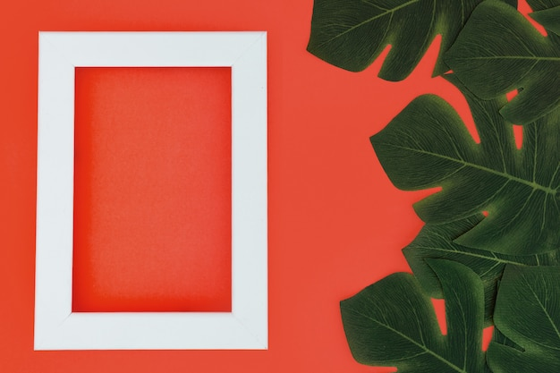 White frame with tropical plants Free Photo