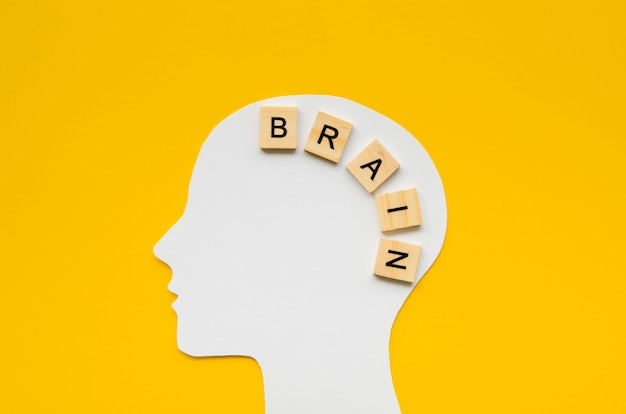 White head with brain word from scrabbles letters Free Photo
