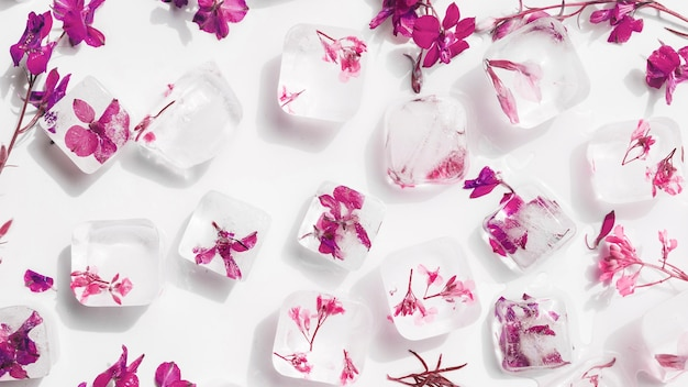 White ice cubes with flowers inside Free Photo