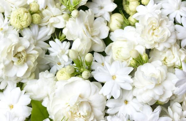 Image result for jasmine flower bunch