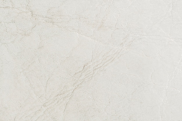 White leather background Free Photo