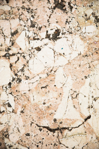 White marble texture close up Free Photo