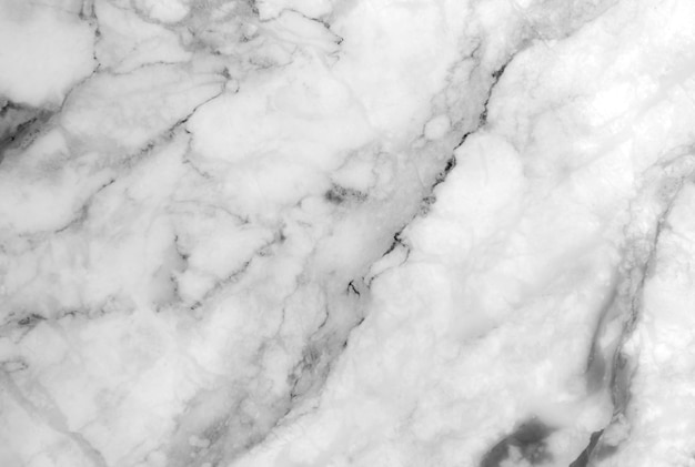 White marble texture with lots of bold contrasting veining Premium Photo