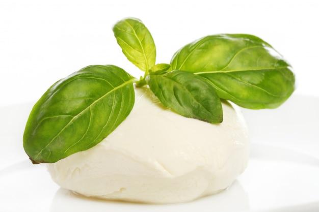 Белый сыр моцарелла с листьями мяты Бесплатные Фотографии