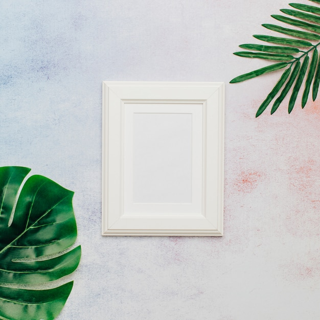 White nice frame with tropical leaves Free Photo
