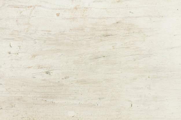White old forest wood texture background Free Photo