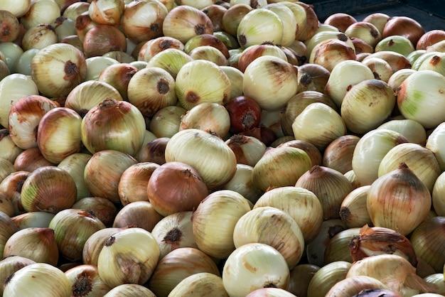White onion on street market stall Premium Photo