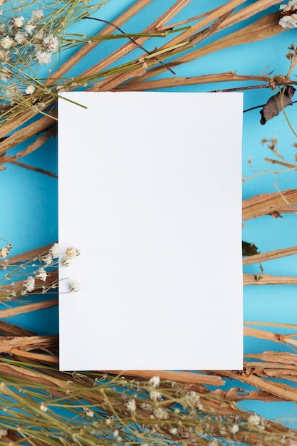 White paper on cotton branches copy space Free Photo