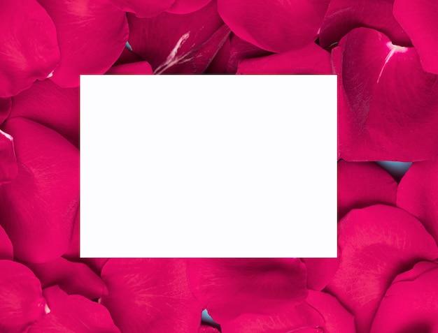 White paper on purple flower petals copy space Free Photo