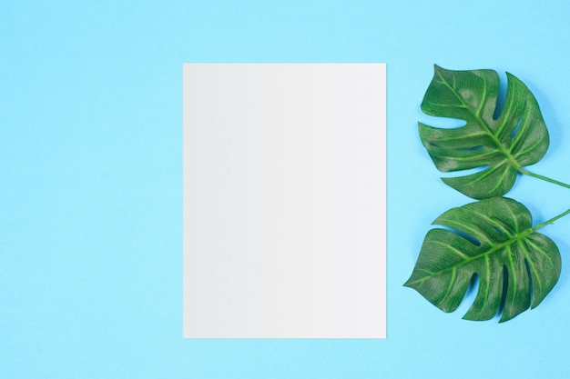 White paper and space for text on pastel color background, minimal concept Premium Photo